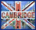 Cambridge Art